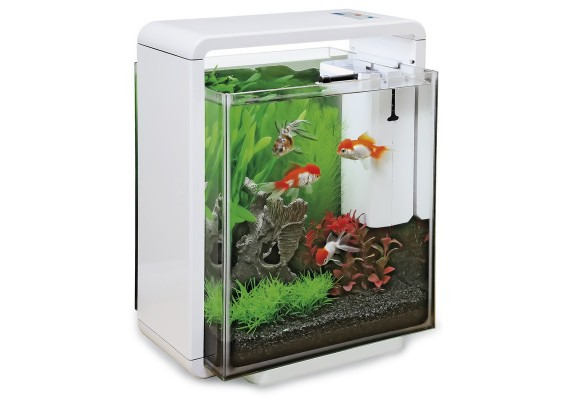Sf aqua home 25 xl aquarium blanc