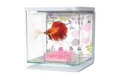 Marina betta kit 2l flower