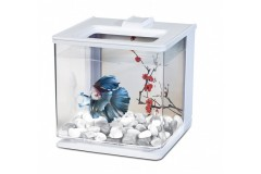 Marina betta kit ez-care blanc