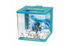 Marina betta kit ez-care bleu