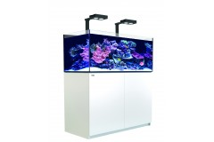 Red sea reefer deluxe xl 425 blanc (2 hydra 26 hd et 2 potences)