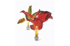 Biorb set grandes plantes vertes & rouges