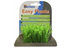 Sf easy plants carpet s 2 cm