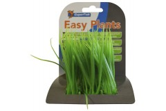 Sf easy plants carpet L 6 cm