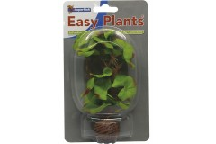 Sf easy plants avant plan 13 cm nmbr. 1 soie