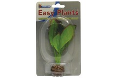 Sf easy plants avant plan 13 cm nmbr. 2 soie