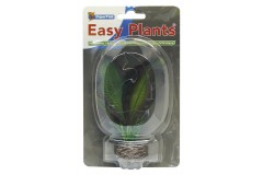 Sf easy plants avant plan 13 cm nmbr. 3 soie