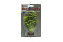 Sf easy plants avant plan 13 cm nmbr. 5 soie