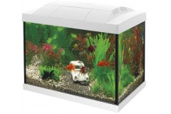 Sf aqua start 20 goldfish kit blanc