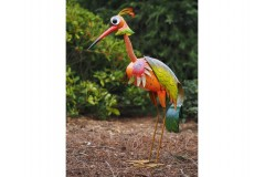 Large colourful bird