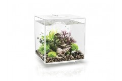biOrb CUBE 30 LED blanc