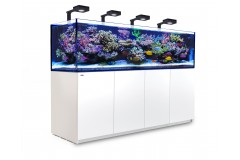 Red sea ReefWave 45 + ReefBeat Cloud Service pour RW 45